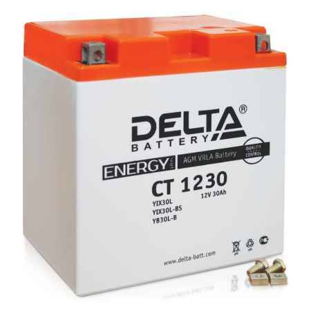 Купить Аккумулятор Delta CT 1230 12V 30а/ч (YIX30L-BS) AGM