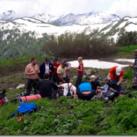 Какие есть варианты экскурсионных туров в горы в Адыгее и как они проходят